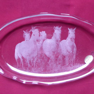 plat allongé chevaux au galop