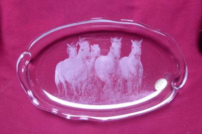 plat allongé chevaux au galop